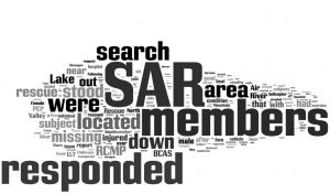 SAR Word Cloud 1[5]