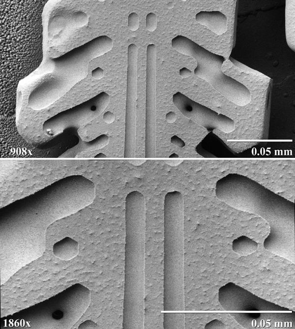 Electron Microscope image of a snowflake